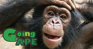 Dschungelmission - Einsatz für die Affen – Bild: Animal Planet