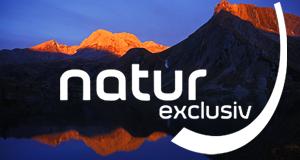 natur exclusiv – Bild: BR/ORF/epo-film/Georg Schnell/Jürgen Eichinger