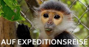 Auf Expeditionsreise – Bild: arte