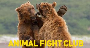 Animal Fight Club – Bild: National Geographic Channel