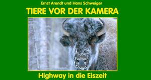 Highway in die Eiszeit – Bild: Arendt/Schweiger