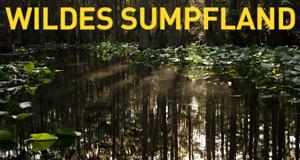 Wildes Sumpfland – Bild: National Geographic Channel
