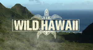 Wildes Hawaii – Bild: National Geographic Channel