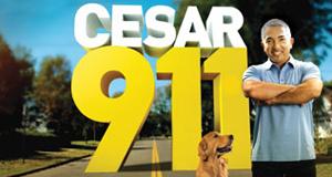Notruf Hund – Einsatz für Cesar – Bild: Nat Geo Wild