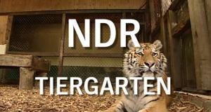 NDR Tiergarten – Bild: NDR
