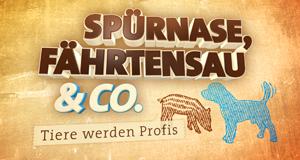 Spürnase, Fährtensau & Co. – Bild: NDR