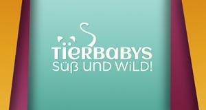 Tierbabys – süß und wild! – Bild: VOX
