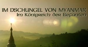 Im Dschungel von Myanmar – Bild: BBC/ZDF/arte