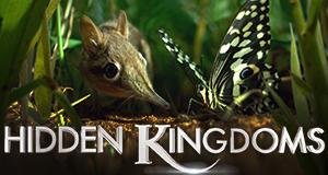 Hidden Kingdoms – Im Reich der kleinen Tiere – Bild: BBC One