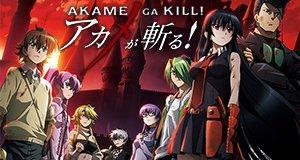 Akame ga Kill – Schwerter der Assassinen – Bild: RED EYES SWORD Project TAKAHIRO & Tetsuya Tashiro / SQUARE ENIX