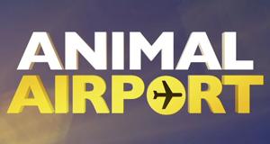 Animal Airport – Wenn Tiere reisen
