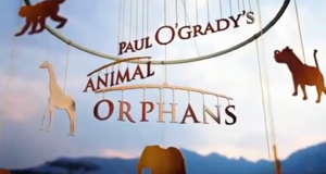 Paul O'Grady's Animal Orphans – Bild: itv/Screenshot