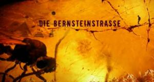 Die Bernsteinstraße – Bild: ZDF/arte