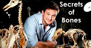 Das Geheimnis der Knochen – Bild: BBC Four