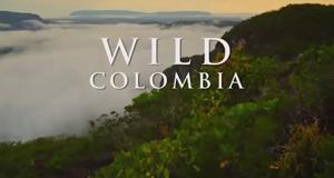 Wildes Kolumbien – Bild: Nat Geo Wild/Screenshot
