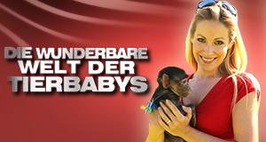 Die wunderbare Welt der Tierbabys – Bild: Sat.1