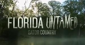 Wildes Florida – Bild: Nat Geo Wild/Screenshot