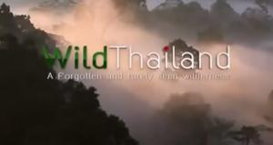 Wildes Thailand – Bild: Nat Geo Wild/Screenshot