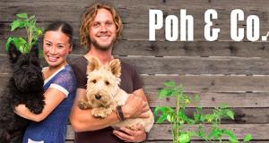 Poh & Co. – Bild: SBS One