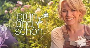 Grün und schön – Bild: ZDF/wellenreiter.tv