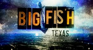 Big Fish, Big Business – Bild: Asylum Entertainment