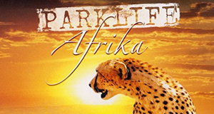 Parklife: Afrika – Bild: EuroVideo/CLA GmbH