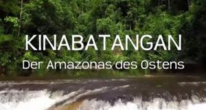 Kinabatangan, der Amazonas des Ostens – Bild: arte