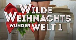 Wilde Weihnachtswunderwelt – Bild: Beate-Uhse.tv