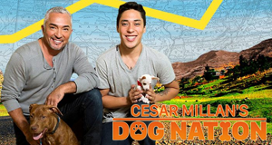 Cesar auf Tour – Bild: Nat Geo Wild