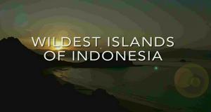 Wildes Indonesien – Bild: Animal Planet