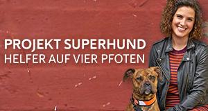 Projekt Superhund – Helfer auf vier Pfoten – Bild: Channel 4