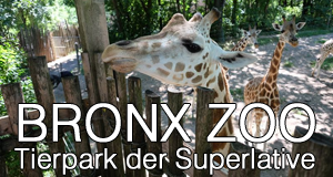 Bronx Zoo – Tierpark der Superlative – Bild: DCI