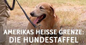 Amerikas heiße Grenze: Die Hundestaffel – Bild: NGC Europe Limited