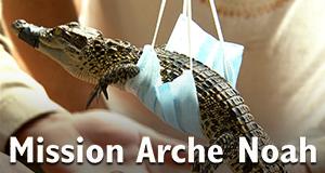 Mission Arche Noah – Bild: ZDF/Éric Pagés
