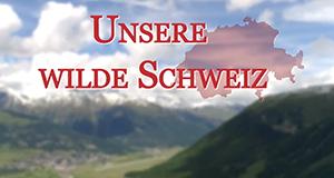 Unsere wilde Schweiz – Bild: 3sat