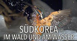 Südkorea – Im Wald und am Wasser – Bild: EBS/ARTE France