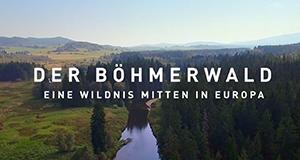 Der Böhmerwald – Eine Wildnis mitten in Europa – Bild: BR