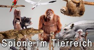 Spione im Tierreich – Bild: BBC