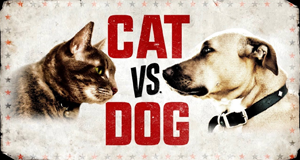 Cat vs. Dog - Die Tiertherapie – Bild: Animal Planet