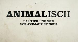 animalisch – Bild: arte/NDR