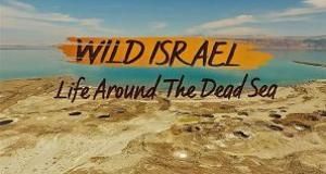Wildes Israel – Bild: Smithsonian Channel
