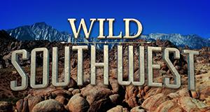 Wildes Amerika: Ungezähmter Südwesten – Bild: Nat Geo Wild