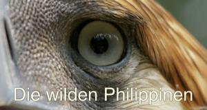Die wilden Philippinen – Bild: 3sat