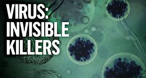 Virus – Unsichtbare Killer – Bild: Sky