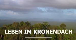 Leben im Kronendach – Bild: arte/BR Fernsehen