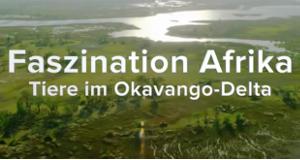 Faszination Afrika – Bild: arte/ZDF