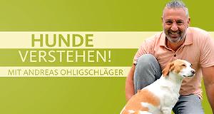 Hunde verstehen! – Bild: WDR/Fernsehkraft UG