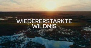 Wiedererstarkte Wildnis
