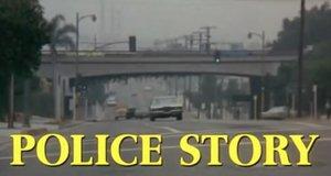 Police Story – Immer im Einsatz
