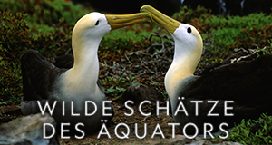 Wilde Schätze des Äquators – Bild: NHNZ